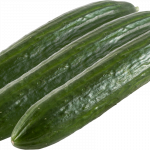 Long-fruited cucumber