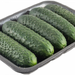 Short-fruited cucumber