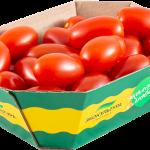 Red Plum Cherry Tomato